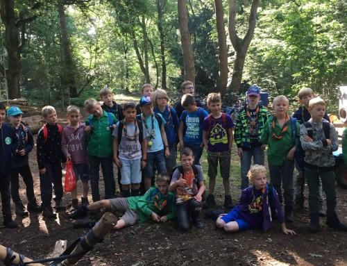 Welpen: Fantastisch kamp in Ommen!